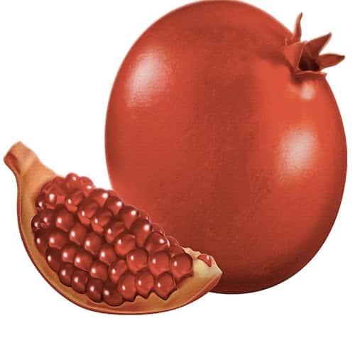 Stutenmilchseife Granatapfel Ovis 100 g Frucht