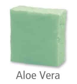 Aloe Vera Reinigung