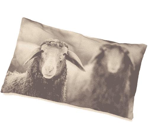 Zirbenkissen mit Zirbenspänen - Schaf Sepia - Ovis 30 x 50 cm