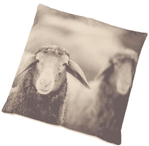 Zirbenkissen mit Zirbenspänen - Schaf Sepia - Ovis 40 x 40 cm