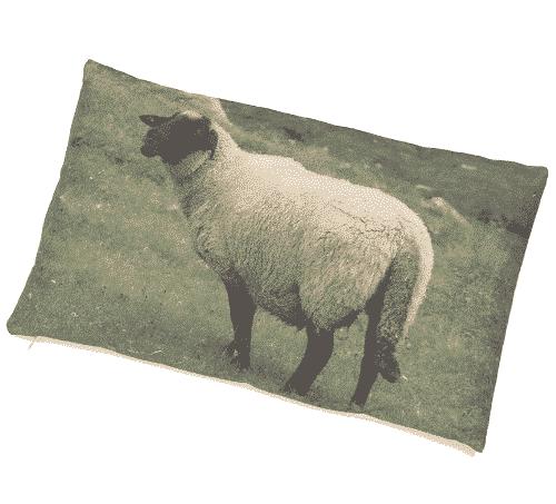 Zirbenkissen mit Zirbenspänen - Schaf & Wiese - Ovis
