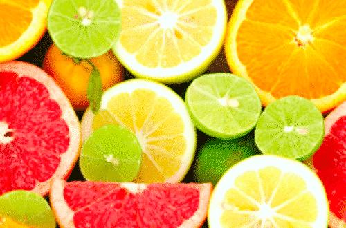 Bio Schafmilchseife Fresh - BioLina - Zitrus