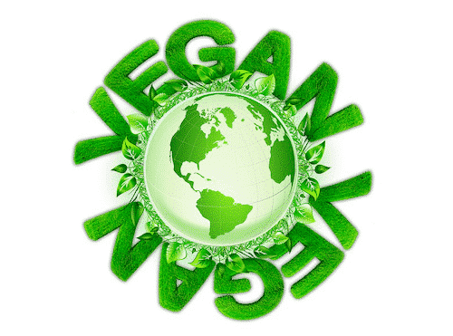 Vegane Seife von Florex