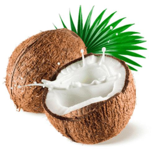 Vegane Seife mit Kokosnussmilch - Pflanzenölseife - Bild 2