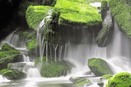Trommelstein zur Wasserbelebung - Jaspis rot - Bild 2