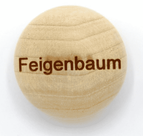 Handschmeichler Feigenbaum - Lieblingsbaum - Baumstark Initiative - Geschenk aus Holz