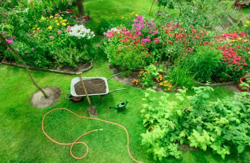 Meine Garten - Welt
