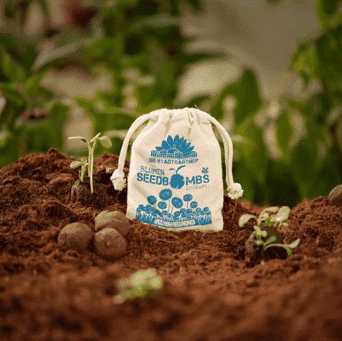 Samenbomben Blumen - Schmetterling - Die Stadtgärtner