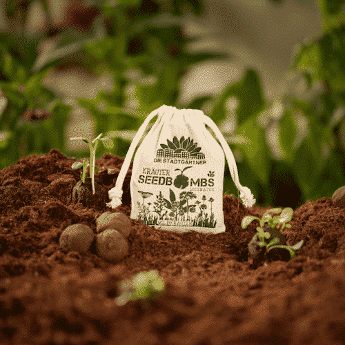 Samenbomben - Wildblumen - Die Stadtgärtner 3