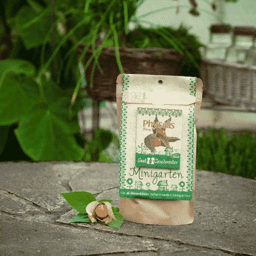 Minigarten Physalis - Die Stadtgärtner