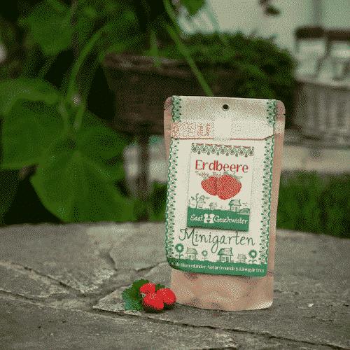 Minigarten Erdbeere - Tubby Red - Die Stadtgärtner 1