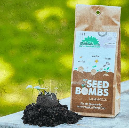 Samenbomben - Bienenweide - Die Stadtgärtner