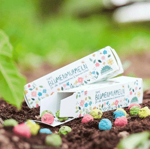 Samenbomben - Bunte Blumenmurmeln - Die Stadtgärtner