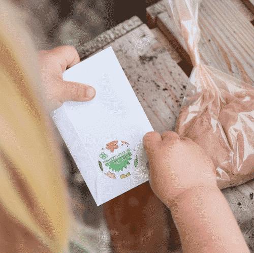 Blumenmurmeln Kit - Die Stadtgärtner 4