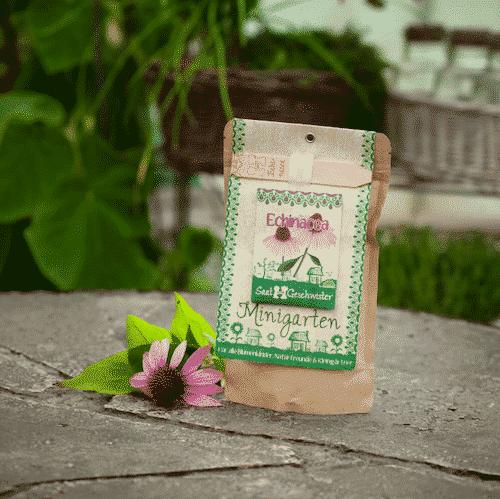 Minigarten Echinacea - Die Stadtgärtner