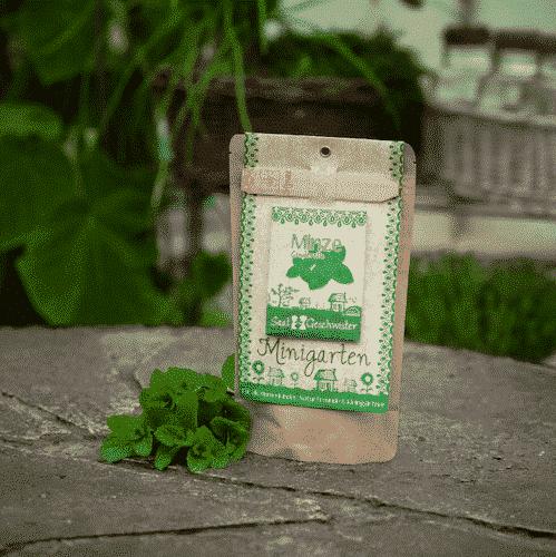 Minigarten Minze - Die Stadtgärtner