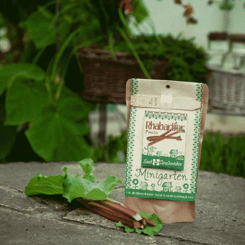 Minigarten Rhabarber - Die Stadtgärtner