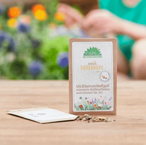 Bienenwohl Saatgut - Die Stadtgärtner 1