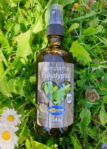 Bio Parfüm für Raum - Eukalyptus - Diogenes 100 ml
