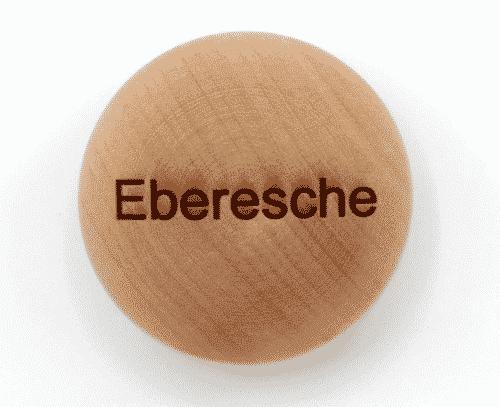 Handschmeichler Eberesche - Lieblingsbaum - Baumstark Initiative
