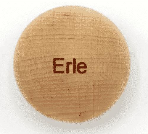 Handschmeichler Erle - Lieblingsbaum - Baumstark Initiative