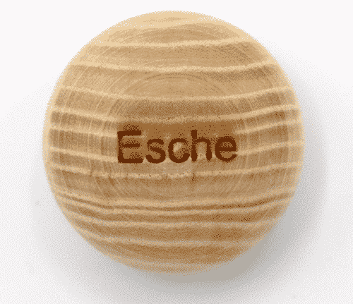Handschmeichler Esche - Lieblingsbaum - Baumstark Initiative