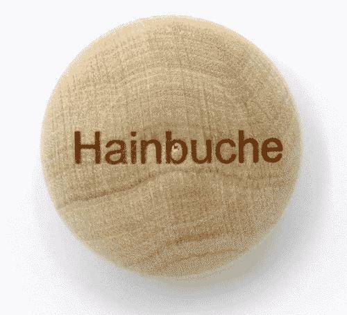 Handschmeichler Hainbuche - Lieblingsbaum - Baumstark Initiative