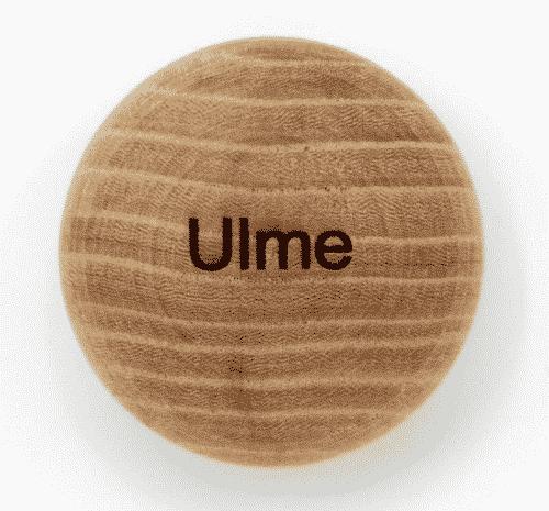 Handschmeichler Ulme - Lieblingsbaum - Baumstark Initiative
