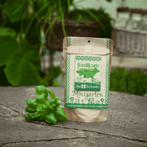 Minigarten Basilikum - Die Stadtgärtner