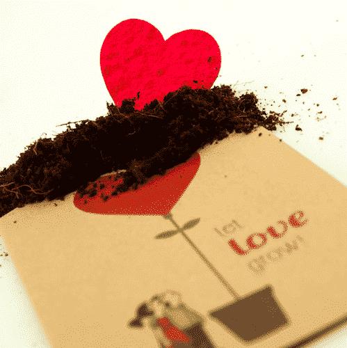 Grußkarte Let Love Grow - Die Stadtgärtner 1
