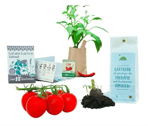 Garten Set II - Tomaten & Chili & Unkraut - Die Stadtgärtner