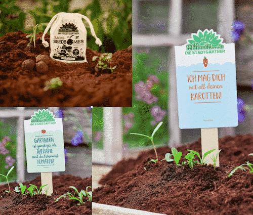 Garten Set IV - Tomate & Unkraut & Karotte - Die Stadtgärtner
