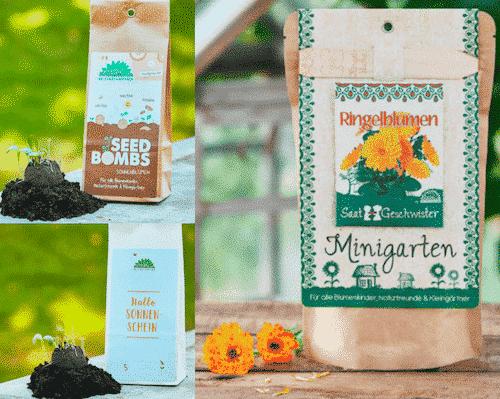Garten Set IX - Ringelblumen & Sonnenblumen & Sonnenschein - Die Stadtgärtner